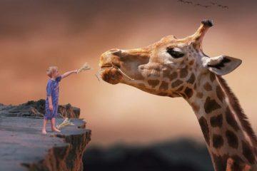 Giraffe mit Kind als Symbol für gewaltfreie Kommunikation mit Kindern